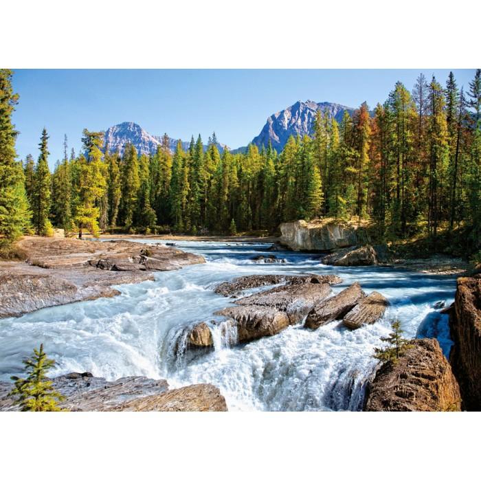Canada, Parc National de Jasper : Rivière Athabasca