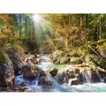 Puzzle  Castorland-200382 Le Ruisseau de la Forêt