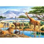 Castorland-21031 2 Puzzles - Animaux de la Savane et de la Jungle