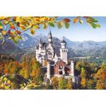 Puzzle  Castorland-300013 Château de Neuschwanstein