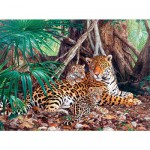 Puzzle  Castorland-300280 Jaguars dans la forêt