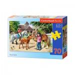 Puzzle  Castorland-B-007066 Le Haras