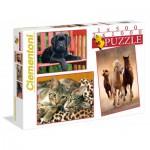 Clementoni-08103 Puzzle 500 Pièces + 2 Puzzles 1000 Pièces - Animaux
