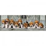Clementoni-39076 Puzzle Panoramique - Beagle