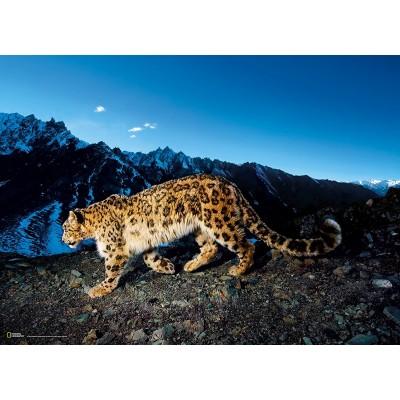 Puzzle Clementoni-39376 National Geographic - Léopard dans la Neige