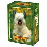 DToys-50199-DG02 Mini Puzzle - Animaux domestiques - Boule de poils blancs