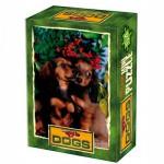 DToys-50199-DG05 Mini Puzzle - Animaux domestiques - Deux chiots tout mignon