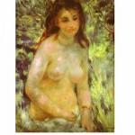 Puzzle  DToys-66909-RE04 Renoir Auguste - Nu au soleil