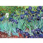 Puzzle  DToys-66916-VG03 Van Gogh Vincent - Iris