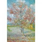 Puzzle  DToys-66916-VG04 Van Gogh Vincent - Pêcher en fleurs