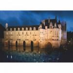 Puzzle  DToys-67562-FC03 Château de France - Château de Chenonceau