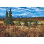 Puzzle  Educa-16008 Etats-Unis : Parc National De Denali