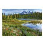 Puzzle  Educa-16309 Parc National Du Mont Rainier, Etats-unis