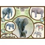Puzzle  Eurographics-6000-0241 L'éléphant