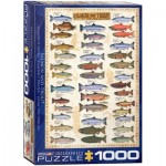 Puzzle  Eurographics-6000-0311 Le saumon et la truite