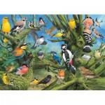 Puzzle  Eurographics-6000-0967 Joahn Francis - Garden Birds