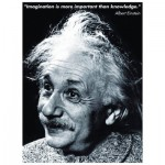 Puzzle  Eurographics-6000-1325 Einstein - Imagination