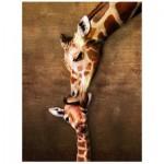 Puzzle  Eurographics-8000-0301 Le baiser de maman Girafe