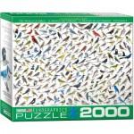 Puzzle  Eurographics-8220-0821 Le Monde des Oiseaux, par David Sibley