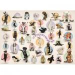 Eurographics-8300-0992 Pièces XXL - Familiy Puzzle: Yoga Puppies