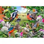 Puzzle  Jumbo-11025 Des Oiseaux pour Toutes les Saisons