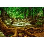 Puzzle  Grafika-Kids-00929 Pièces XXL - Cascade dans la Forêt