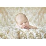 Puzzle  Grafika-Kids-01147 Konrad Bak: Baby sleeping in the Roses