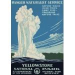 Puzzle  Grafika-00097 Affiche pour Le Parc National de Yellowstone, USA, 1938
