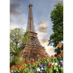 Puzzle  Grafika-01017 Tour Eiffel, Paris