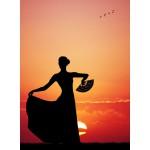 Puzzle  Grafika-01202 Flamenco at Sunset