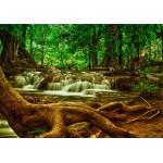Puzzle  Grafika-01468 Cascade dans la Forêt