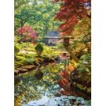 Puzzle  Grafika-01565 Forêt Zen