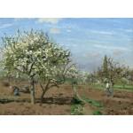Puzzle  Grafika-02027 Camille Pissarro : Verger en Fleurs, Louveciennes, 1872