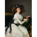 Puzzle   Louise-Élisabeth Vigee le Brun : Comtesse de la Châtre (Marie Charlotte Louise Perrette Aglaé Bontem