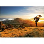 Puzzle  Heye-29596 Nouvelle-Zélande, Todd Sisson : La péninsule d'Otago