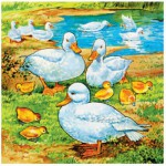 Puzzle  James-Hamilton-525-05 Canards