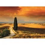 Puzzle   Coucher de soleil en Toscane