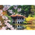 Puzzle   Fleurs au Japon