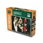 Puzzle  KS-Games-11248 Cats Socks