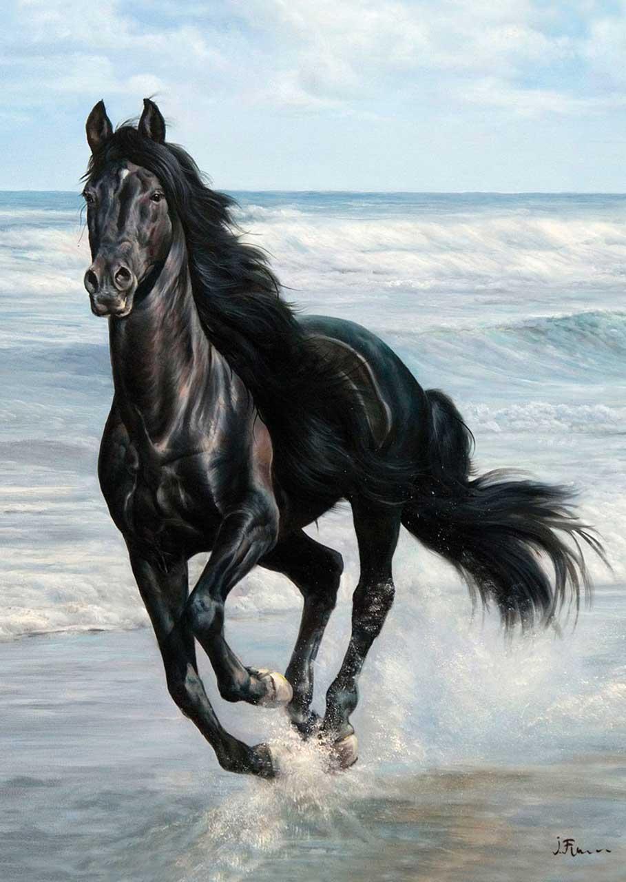 Puzzle cheval au galop sur la plage ks games 11200 100 - Comment dessiner un cheval au galop ...
