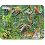 Larsen-Z8-3 Puzzle Cadre - Animaux de la Jungle