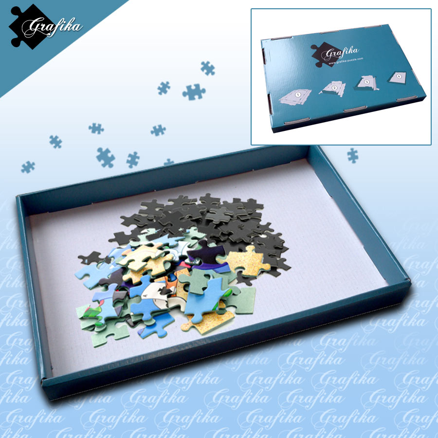 1 Boîte de Tri Bleue - 24 x 22 x 2.5 cm Grafika