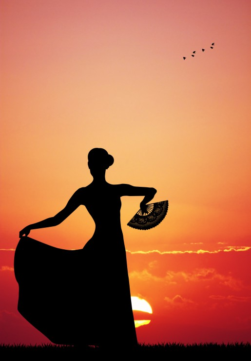 Puzzle Flamenco at Sunset Grafika