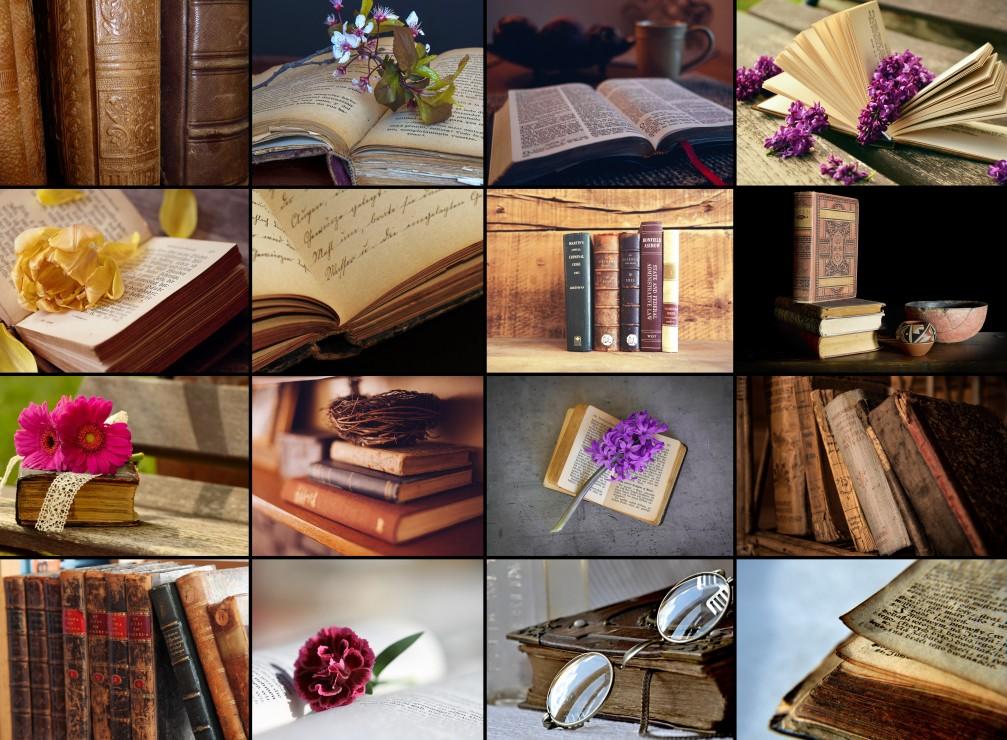 Puzzle Collage - Livres Grafika