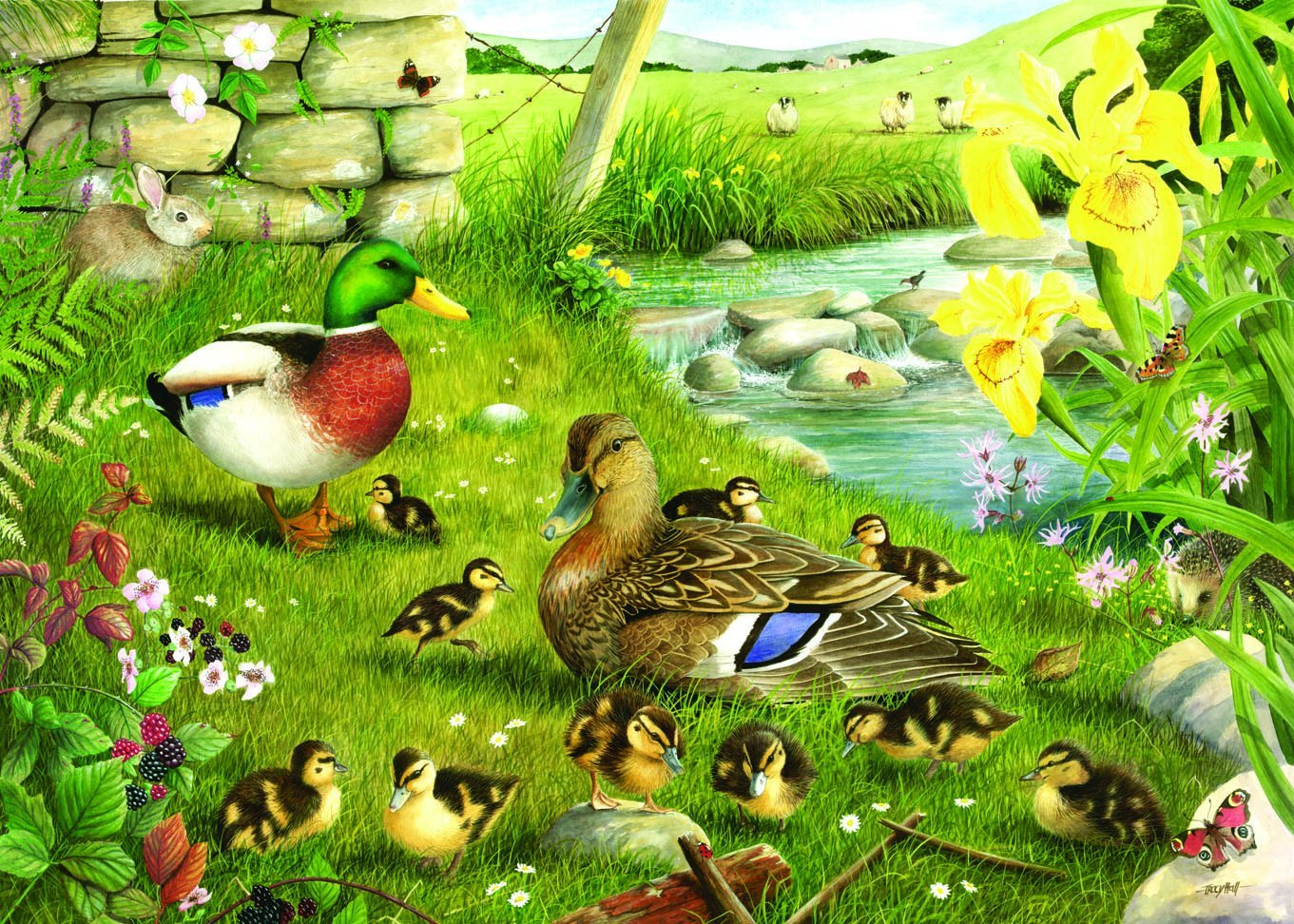 Puzzle Pièces XXL - Ducks To Water The House of Puzzles