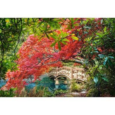 Puzzle Jardin Japonais Castorland 103768 1000 Pieces Puzzles