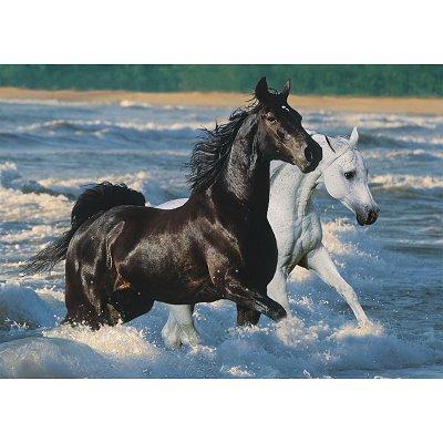 Puzzle chevaux sur la plage ravensburger 16276 1500 pi ces - Mandala de chevaux ...