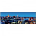 Puzzle   Cincinnati, Ohio