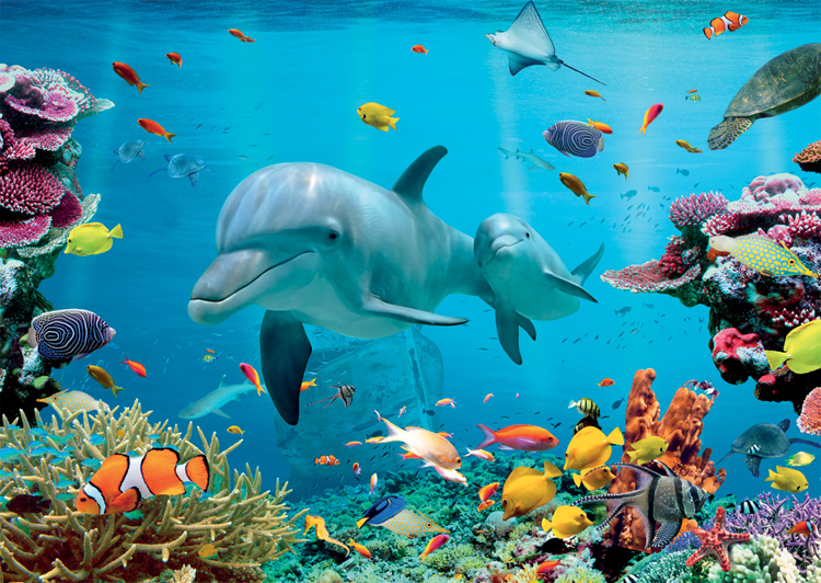puzzle monde sous l 39 eau nathan 87759 1500 pi ces puzzles dauphins planet 39 puzzles. Black Bedroom Furniture Sets. Home Design Ideas