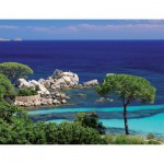 Puzzle  Nathan-87872 Plage Palombaggia
